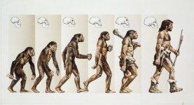 evolution-5c72e6d1c9e77c0001ddcedd.jpg