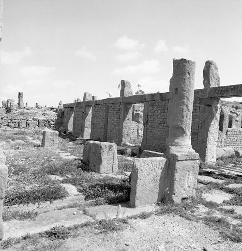 Timgad_15.jpg