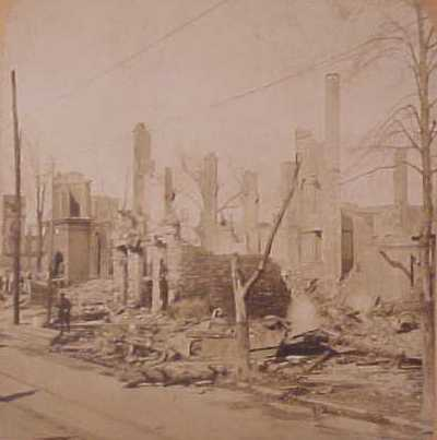 trees-and-poles_after_urban_fire_1.jpg