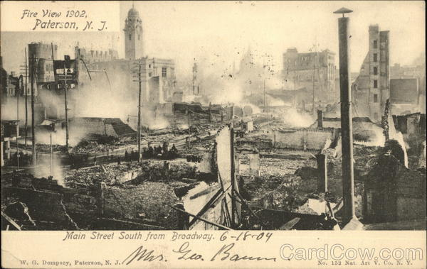 trees-and-poles_after_urban_fire_2.jpg